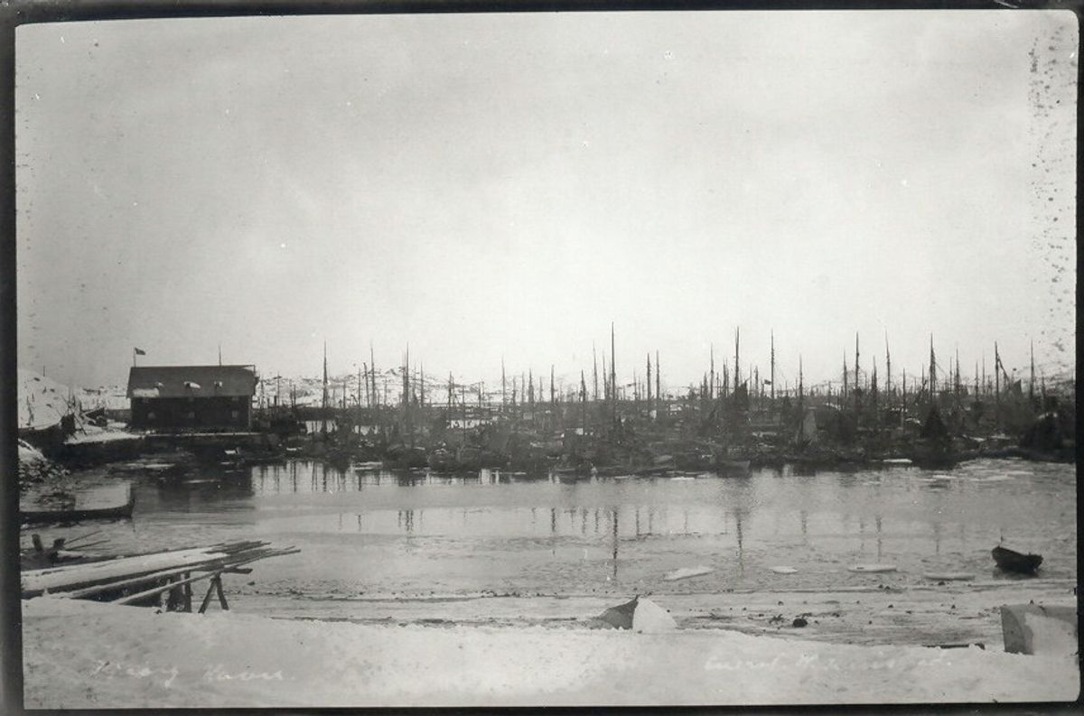 Full at the harbour, 1905